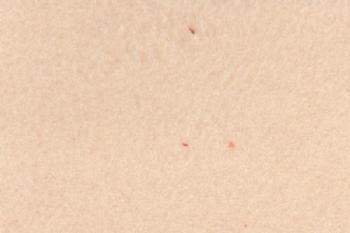 01 | Micro (Döşemelik Kumaş)